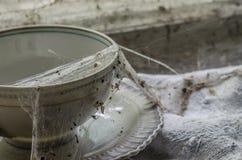 spiderwebs на кофейной чашке Стоковое фото RF