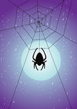 Spiderwebsilhouette Stock Photography