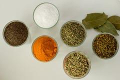 Spieces e hierbas en pequeños vidrios Imagen de archivo libre de regalías