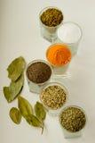 Spieces e hierbas en pequeños vidrios Fotos de archivo libres de regalías