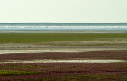Spieczony Jeziorny stepu krajobraz zdjęcie stock
