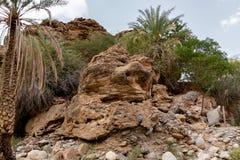 Spieczony riverbed dzwonił wadiego w Azja, w obrzeżach muszkat, Oman obrazy royalty free