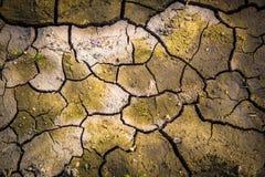 Spieczony Ziemski pragnienie dla wody obrazy stock