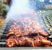 Spiedi con carne sulla griglia del barbecue Fotografia Stock Libera da Diritti