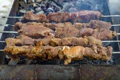 Spiedi con i kebab della carne sulla griglia immagine stock libera da diritti