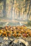 Spiedi del barbecue Fotografie Stock