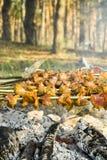 Spiedi del barbecue Fotografia Stock Libera da Diritti
