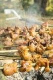 Spiedi del barbecue Fotografia Stock