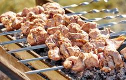 Spiedi del barbecue con carne Immagini Stock