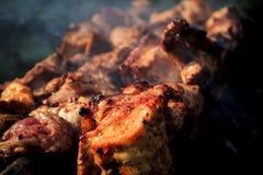Spiedi del barbecue con carne Fotografie Stock Libere da Diritti