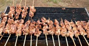 Spiedi della griglia del pollo immagine stock