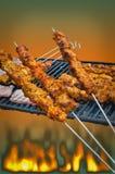 Spiedi sul barbecue Fotografia Stock