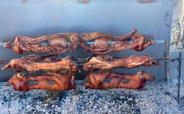 Spiedo della carne direttamente dagli agricoltori locali Fotografia Stock