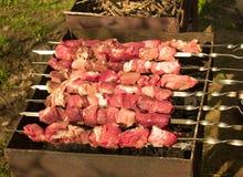 Spiedo grezzo di kebab Fotografie Stock Libere da Diritti