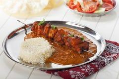 Spiedo indiano del pollo Immagine Stock