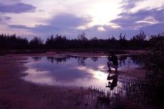 Spiegel des purpurroten Himmels mit Schatten des Fotografen Stockbild