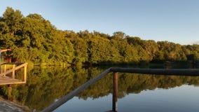 Spiegel des Waldes Stockbild