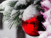 Spiegel rode die bal met sneeuw wordt bestrooid Stock Afbeelding