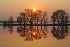 Spiegelbezinning van de zon en de bomen in de Baai op een rood de zonsondergang Royalty-vrije Stock Afbeelding