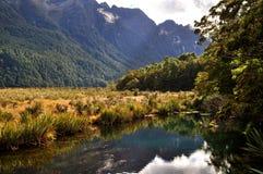 Spiegelmeer dicht bij Milford-Geluid, Nieuw Zeeland royalty-vrije stock afbeeldingen