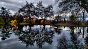 Spiegels in het meer Stock Foto