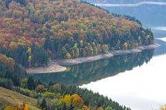 Spiegelung des Waldes Stockfoto
