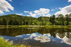 Spiegelung in einem Teich Stockfotografie