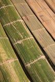 Spieghi il bambù fotografia stock