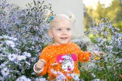 Spiel des kleinen Mädchens in der Aster blüht im Park. Stockfoto