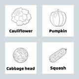 Spiel für Kinder gemüse Stellen Sie Farbtonseite ein Kürbis, Blumenkohl, Kohlkopf, Kürbis Lizenzfreie Stockfotos
