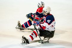 Spiel im Eisschlittenhockey Stockbilder