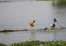 Spiel im Wasser Stockfoto