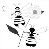 Spiel mit zwei Bienen um ein Gänseblümchen stock abbildung