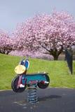 Spiel unter Kirschbäumen Stockbilder