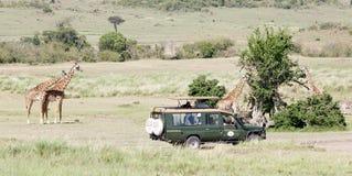 Spielbetrachtungsfahrzeug und -giraffen Lizenzfreie Stockfotos