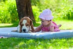 Spiele des kleinen Mädchens mit Hund Stockbild