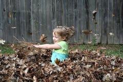Spielen in den Blättern stockfoto