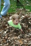 Spielen in den Blättern Lizenzfreie Stockfotografie