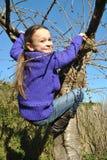 Spielen des kleinen Mädchens: Steigen eines Baums Stockfoto