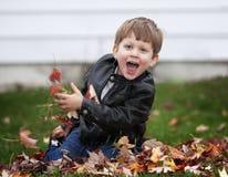 Spielen des Kleinkind-Jungen in den Blättern Stockfotos