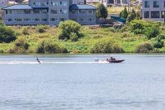 Spielen des Wasserskis oder des wakeboard stockfotografie