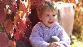 Spielen im Herbstpark Lächelndes Kind über natürlichem Hintergrund des Herbstes Herbstporträt des schönen Vorschuljungen herein stock footage