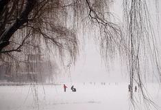 Spielen im Schnee Stockfoto