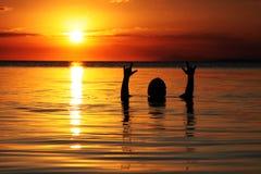 Spielen im Wasser am Sonnenuntergang lizenzfreies stockbild