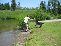 Spielen mit dem Hund Stockfotografie