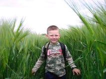 Spielen mit Weizen Lizenzfreies Stockfoto