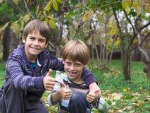 Spielen mit zwei Brüdern Stockfotografie