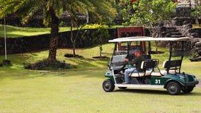 Spielen Sie das Auto Golf, das sich heraus vom RasenParkplatz bewegt stock video