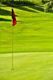 Spielen Sie Feld withred Markierungsfahnenloch und Waldhintergrund Golf Lizenzfreie Stockfotos