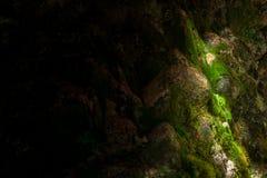Spielen Sie mit Schatten und Sonnenlicht an einem Wasserfall Stockfoto